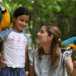 Best Activities for Families Around Playa del Carmen