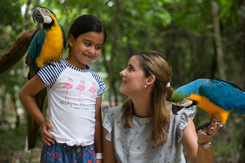 Best Activities for Families Around Playa del Carmen