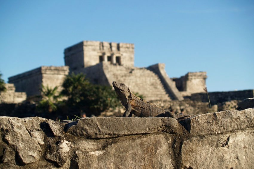 Tulum Tours Top 3 We Recommend